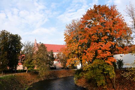 vilnius: Vilnia river in autumn in Vilnius (Lithuania)