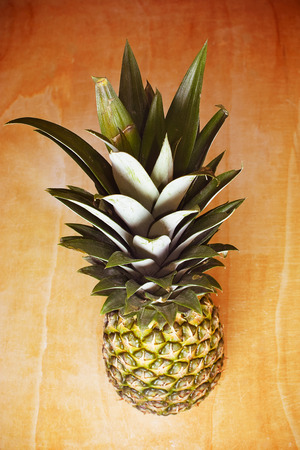 tuft: Pineapple with green tuft