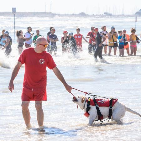 Pescara, Italy - June 18, 2017: Lifeguard and rescue dog at Ironman 70.3 in Pescara