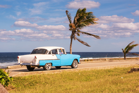 Old car and palm trees on the waterfront in Cuba