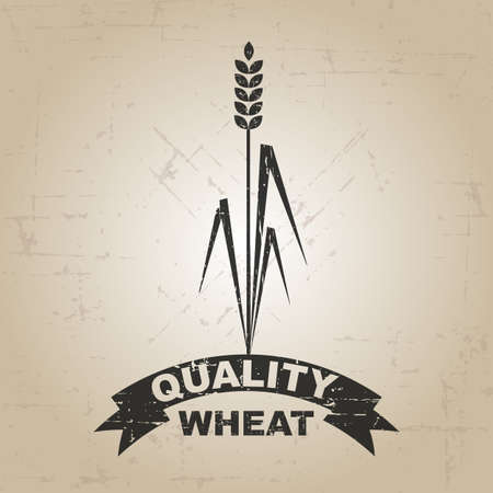 agro: Quality wheat
