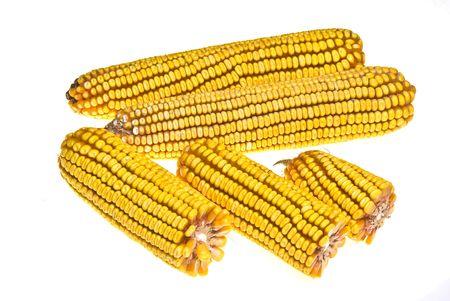 corncob: Yellow Corncob isolated on white
