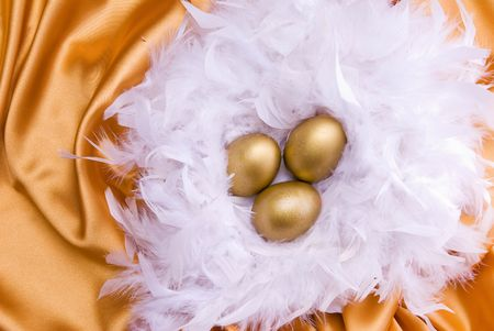 Golden eggs Stock Photo - 4898179