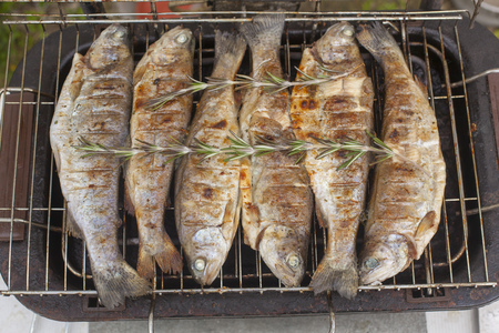 Food scenes - grilling trout. Preparing fresh fish on electric grill. Cooking and frying. Top view Standard-Bild - 104910818