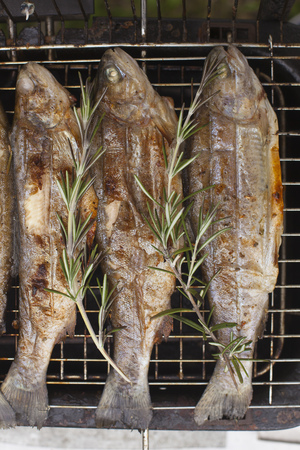 Food scenes - grilling trout. Preparing fresh fish on electric grill. Cooking and frying. Top view Standard-Bild - 105361976