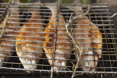 Food scenes - grilling trout. Preparing fresh fish on electric grill. Cooking and frying. Top view Standard-Bild - 104914212