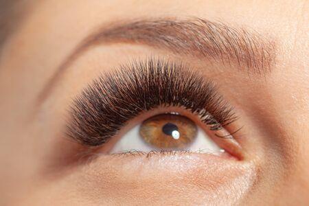 Behandlung der Wimpernverlängerung. Wimpern. Frauenaugen mit langen Wimpern. Standard-Bild