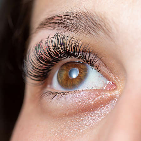 Treatment of Eyelash Extension. Lashes. Woman Eyes with Long Eyelashes. 免版税图像