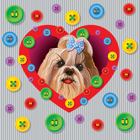 yorkshire terrier: Greeting vector card with a Yorkshire terrier with decorative buttons