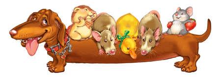 rata caricatura: Cartoon mascotas roedores y un patito, montan una parte posterior de la amiga de un perro de un perro salchicha. Tarjeta de invitación para una fiesta o un cumpleaños. Ilustración de la trama.