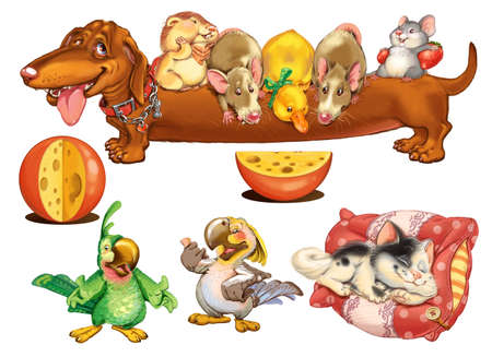 cute dogs: Home Zoo. Characters design for invitations or greeting cards. Raster illustration. Stock Photo