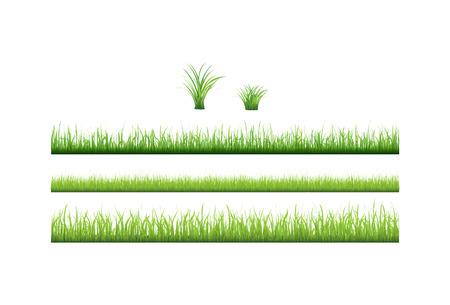 Green grass collection Stock Vector - 6584634