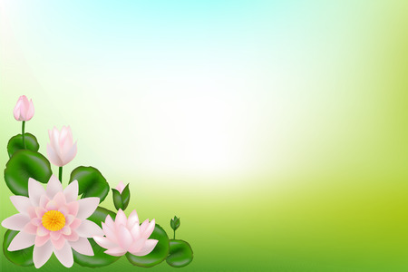 Background with Lotuses, leaves and tangier lines