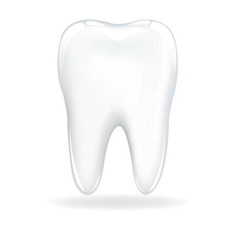 dientes con caries: Tooth brillante, aislada en fondo blanco, ilustraci�n vectorial