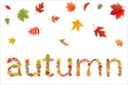 Autumn Leaves In Form Of Word, Isolated On White Background, Vector Illustration Stock Vector - 8115171