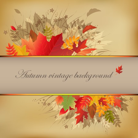 Autumn Abstract Vintage Background On Old Paper, Vector Illustration Stock Vector - 8115281