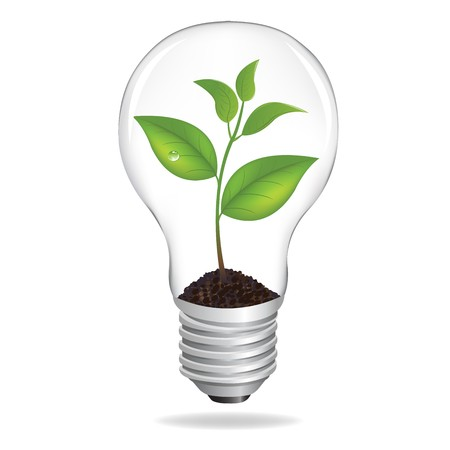 Bulb With Sprout, Isolated On White Background, Vector Illustration  Vector