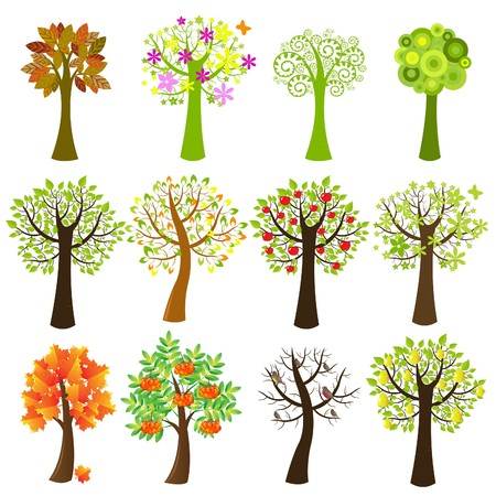 Collection Of Trees, Isolated On White Background, Vector Illustration