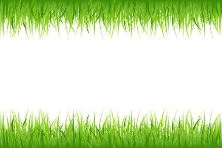 Gras auf wei�em Hintergrund, Vektor-Illustration Lizenzfreie Bilder - 8115140