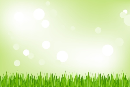 Background Of Green Grass, On Green Background With Bokeh, Vector Illustration Stock Vector - 8434926
