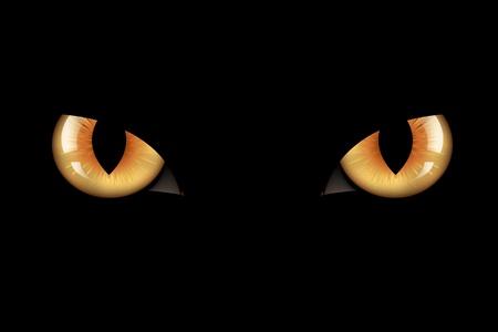 Wild Cat Eyes, On Black Background, Vector Illustration Stock Vector - 8434929