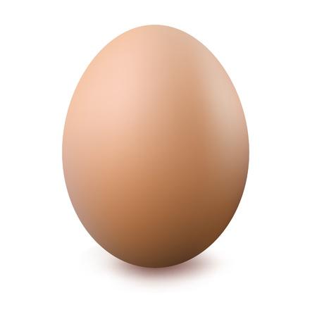 huevos fritos: Cerca de huevo, aislado sobre fondo blanco, ilustraci�n vectorial