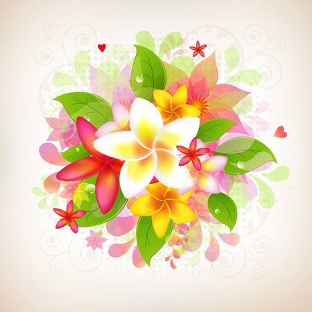botanic: Abstract Floral Background With Frangipani, Isolated On White Background, Vector Illustration Illustration