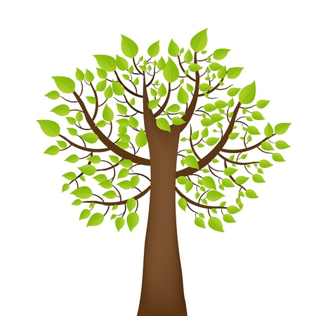 leafage: Tree With Green Leafage,  Isolated On White Background, Vector Illustration Illustration