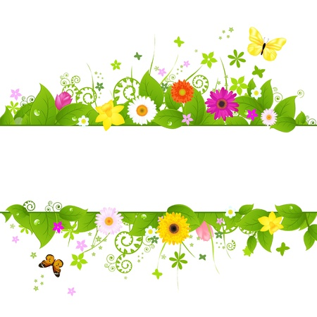 gerber flowers: Spring Background, Isolated On White Background, Vector Illustration Illustration