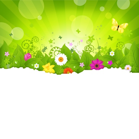 fragmentary: Nature Background With Flowers, Isolated On White Background, Illustration
