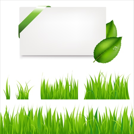 Green Grass Collection And Blank Gift Tag With Leaves And Green Satin Ribbon, Isolated On Grey Background, Vector Illustration Stock Vector - 9528121