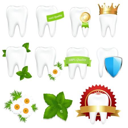 dientes con caries: Tooths conjunto, aislado sobre fondo blanco, ilustraci�n vectorial
