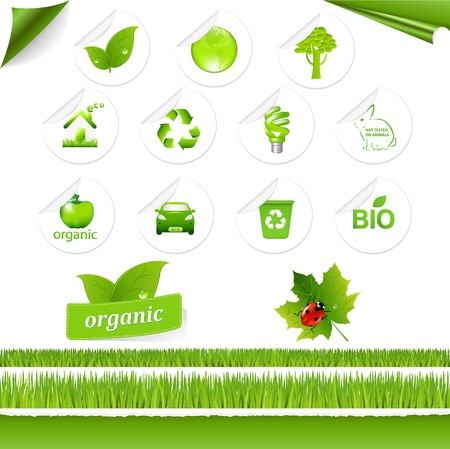 Eco Set, Isolated On White Background, Vector Illustration Vector