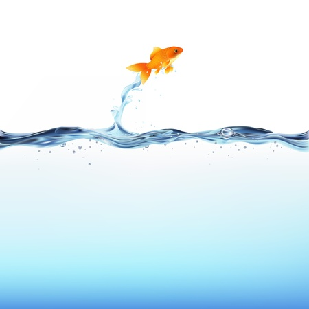 Goldfish Leaping Out Of Water, Isolated On White Background, Vector Illustration  Illustration