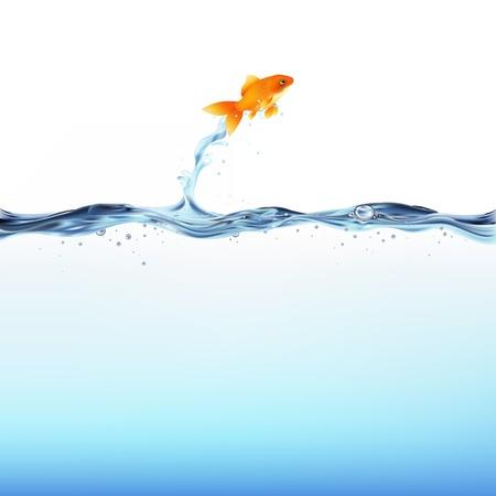 peces de colores: Pececito saltando fuera del agua, aislada sobre fondo blanco, ilustración vectorial