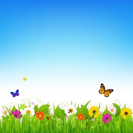 butterfly ladybird: Naturaleza paisaje, ilustraci�n vectorial   Vectores