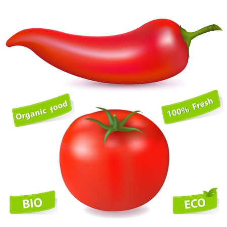 Red Hot Chili Pepper And Tomato, Isolated On White Background, Vector Illustration