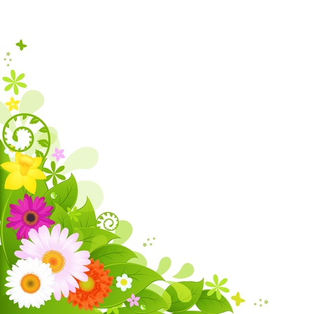 Summer Flowers, Isolated On White Background, Vector Illustration  Vector