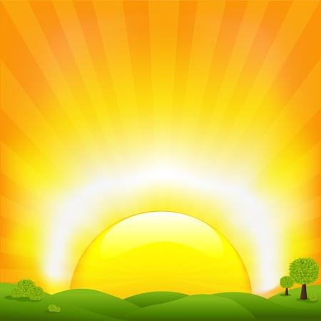 sunrise field: Sunset And Field, Vector Illustration Illustration