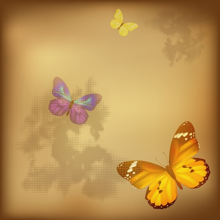 Retro Butterfly On Old Paper, Vector Illustration Vector