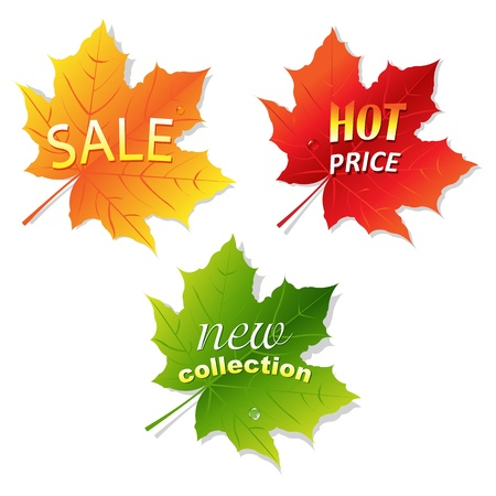 Collection Sale Leaves, Isolated On White Background Illustration