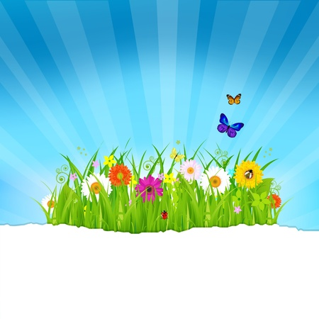 grass blades: Green Grass With Flowers And Paper, Vector Illustration