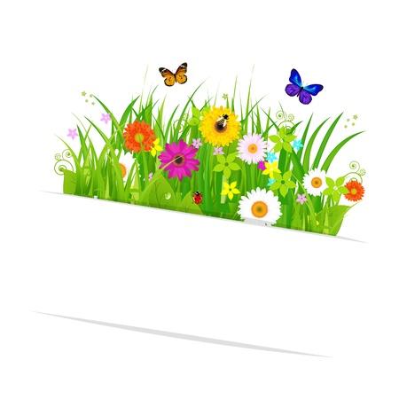 campo de margaritas: Adhesivas de papel con hierba y flores, aisladas sobre fondo blanco, ilustraci�n vectorial