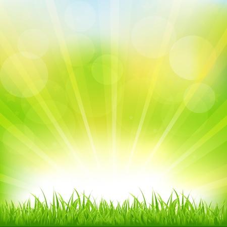 verde: Fondo Verde, con césped y Sunburst, ilustración vectorial