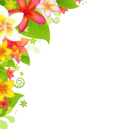 tropical border: Natural Background With Flower, Isolated On White Background, Vector Illustration