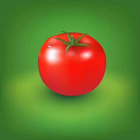 salat: Red Tomato With Green Background, Vector Illustration
