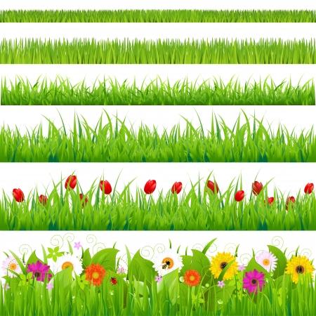 lawn: Grote Gras En Bloem Set, Geà ¯ soleerd op witte achtergrond, Vector Illustratie