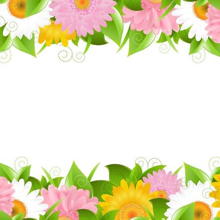 gerbera daisy: Flor y hojas de Fronteras, ilustraci�n vectorial