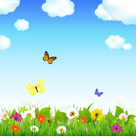 Flower Meadow With Butterflies, Vector Illustration   Vector