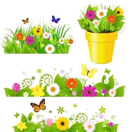 catarina caricatura: Conjunto de hierba verde con las flores, aisladas sobre fondo blanco, ilustraci�n vectorial